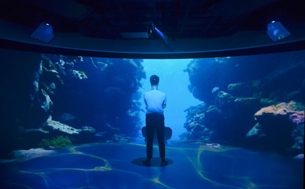 沉浸科技海洋 探访索尼沉浸式双曲面大屏幕显示系统