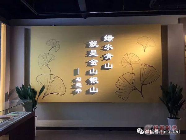 """蓝硕""""时光隧道""""点亮世界银杏博物馆"""