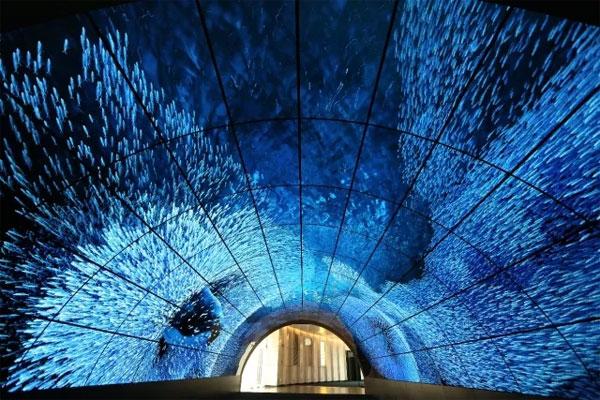 全球最大的OLED隧道