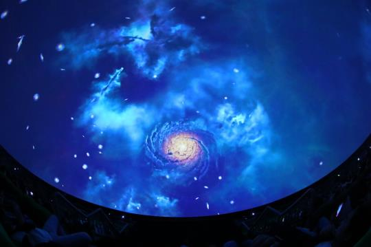 与会来宾欣赏《我们都是小星星》、《时间旅行》等多部8K特效影片