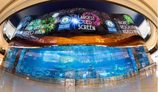 迪拜水族馆项目