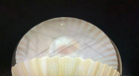 珠海日月贝璀璨绽放,巴可向盛世献礼