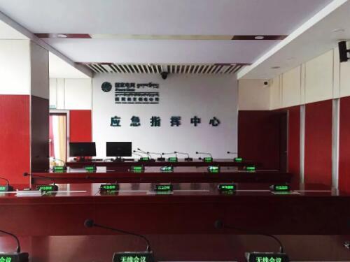 西藏国网电力