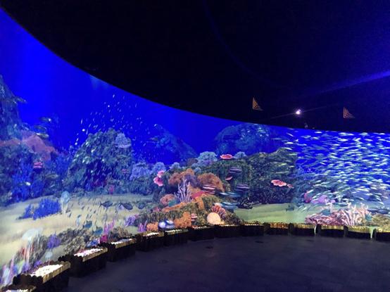 """明基激光工程投影机打造陆地海洋景观""""深蓝之境"""""""