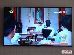语音控制!夏普50寸新品TV仅5499元