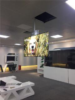 LG&nbsp;<font color='#FF0000'>OLED</font>双面屏项目落户上海--开启实际应用进程