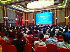 2017中国国际O<font color='#FF0000'>LED</font>产业大会开幕――天马拥抱O<font color='#FF0000'>LED</font>未来