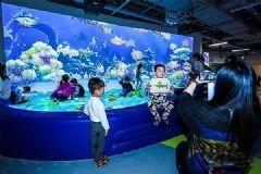 DET激光投影助力上海首家AR儿童体验馆