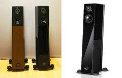 容积增加:AudioPhysicVirgoIII音箱