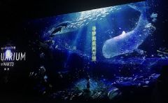 """明基激光工程投影机""""深海之光沉浸式艺术展""""赏析"""