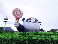 """大熊猫终于有了彩色照片?<font color='#FF0000'>NEC</font>工程投影为""""亲子游""""探索更多可能"""