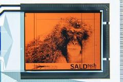 HolstCenter采用sALD在PEN箔上创建IGZOOLED显示器背板