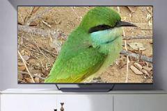 第一次听说<font color='#FF0000'>OPPO</font>TV你会买吗?
