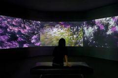 连接非物质与再物质,明基投影机展现计算机艺术美学
