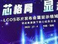 投影圈的破缺:中国和外国的二元世界